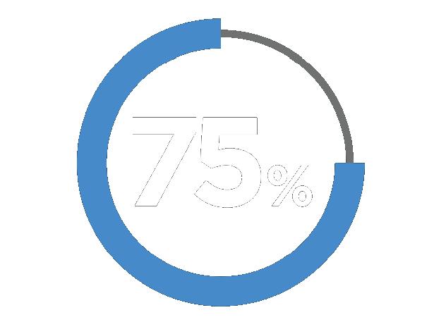 75% Percentage